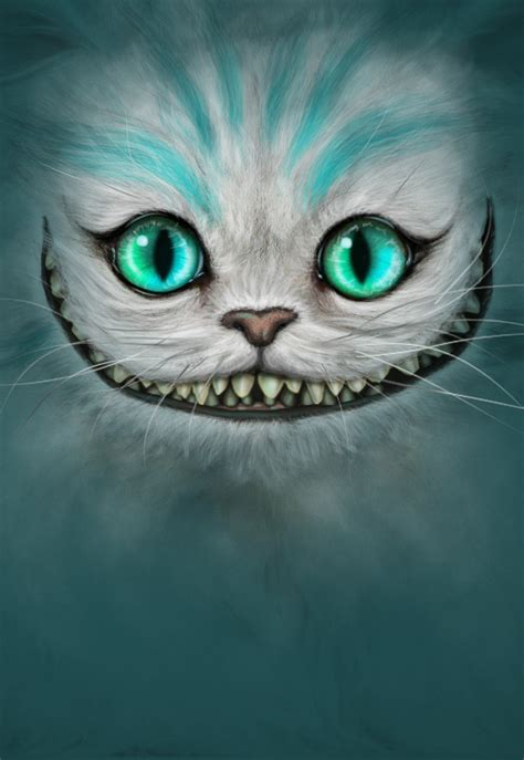 cheshire cat of the cheshire cat