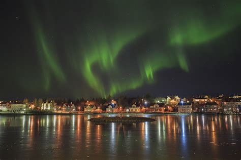 reykjavik iceland northern lights best value northern lights bus tour from reykjav 237 k guide
