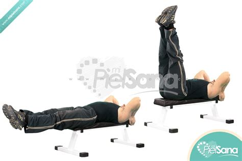 leg raise on bench flat bench lying leg raise 28 images ace fit fit life