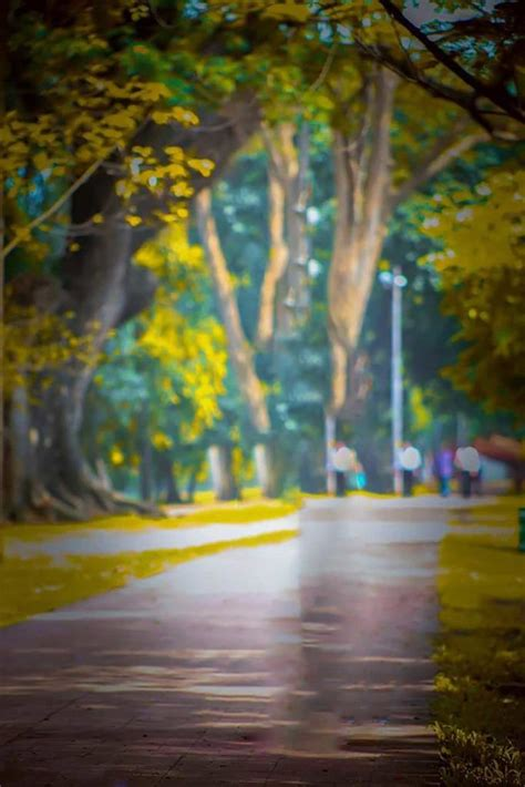 cb background ful hd  blur photo background