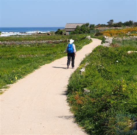 Camino Walk Route by Walking The Portugese Coastal Route Camino De Santiago Forum