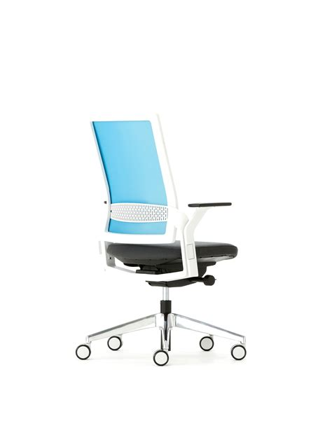 check list ergonomic chair ambience dor 233