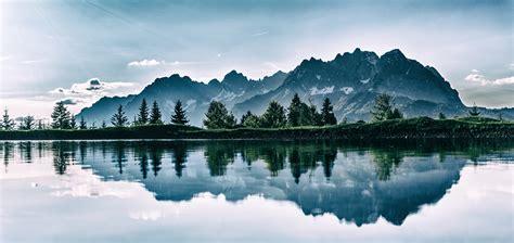 nature images pexels  stock