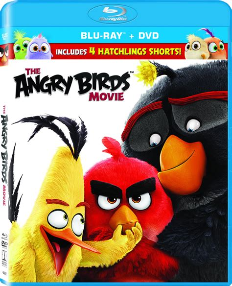 the angry birds movie dvd release date august 16 2016 the angry birds movie dvd release date august 16 2016