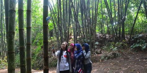 Kursi Bambu Sudut yuk menikmati keasrian kung bambu klatakan borobudur