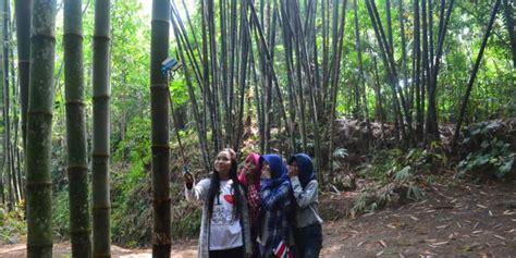 Lu Taman Delman yuk menikmati keasrian kung bambu klatakan borobudur