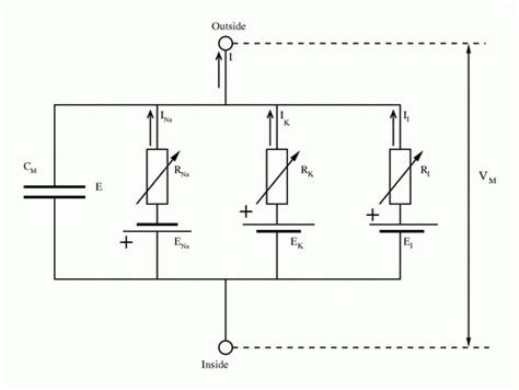define wiring diagram k grayengineeringeducation