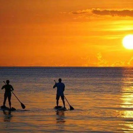aquatic boat rental fort lauderdale gold coast aquatic adventures fort lauderdale 2018 all