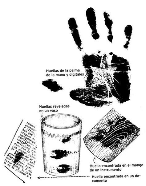 Criminalística visual. Parte 3 / 3 - Ciencia y Educación