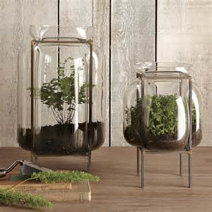 terrariums and other small space and urban gardening ideas the inspired room