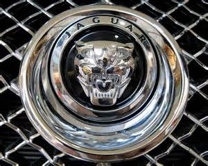 Jaguar Cars Logo Everything About All Logos Jaguar Logo Pictures