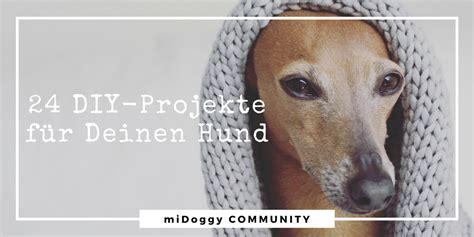 diy projekte 24 diy projekte f 252 r deinen hund midoggy community