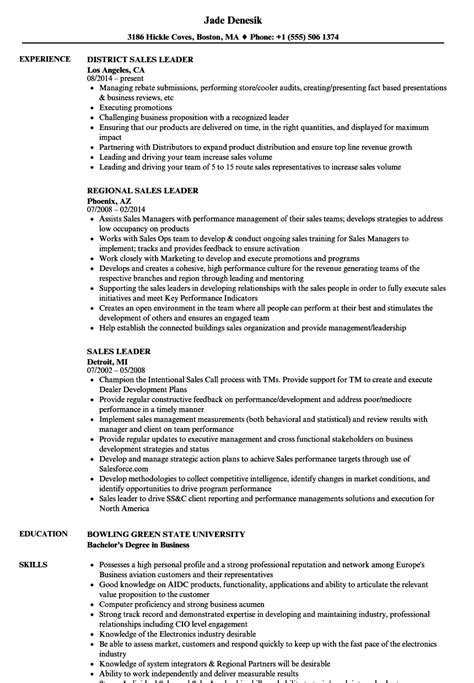 leadership resume sles sales leader resume sles velvet