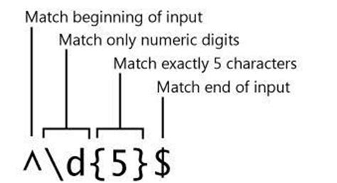 html input pattern matching c net regular expression in c net