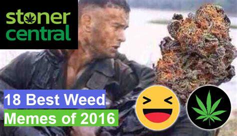 Best Weed Memes - 18 best weed memes of 2017 weed daily cannabis news
