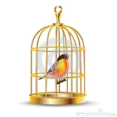 Bird Cage Stock Images Image 24110704 Cage Cartoon Golden Bird Cage With Bird Inside Royalty