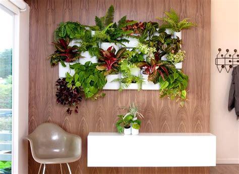 giardini verticali fai da te giardini verticali realizzazione crea giardino