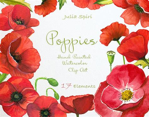 Painted Upholstery Watercolor Poppies Flowers Clipart Poppy Hand Painted