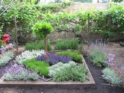 How To Make An Herbal Knot Garden Gardens Raised Beds Herb Garden Layout