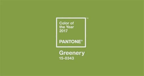 blogger of the year 2017 introducing the 2017 pantone color of the year greenery