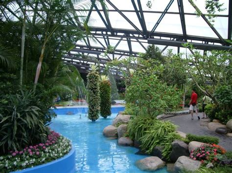 yeomiji botanical garden photo