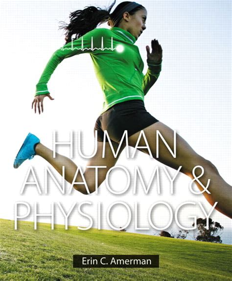 human anatomy plus mastering a p with pearson etext access card package 9th edition new a p titles by ric martini and judi nath pearson education human anatomy physiology plus