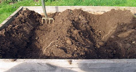 Raised Garden Soil by Raised Beds An Englishman S Garden Adventures