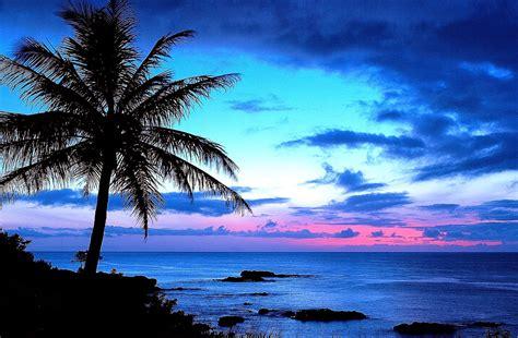 Hawaii Search Hawaii Wallpaper Cool Hd Wallpapers