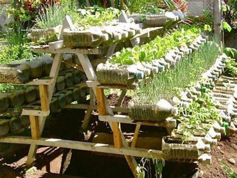 amazing vegetable gardens gardens vegetables and picnics on pinterest