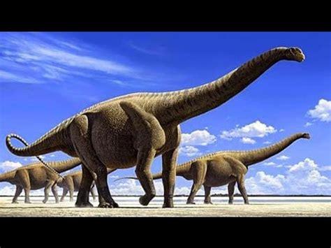 film dinosaurus lucu 5 dinosarus terbesar yang pernah hidup di muka bumi ini