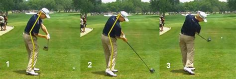 david toms golf swing critical review