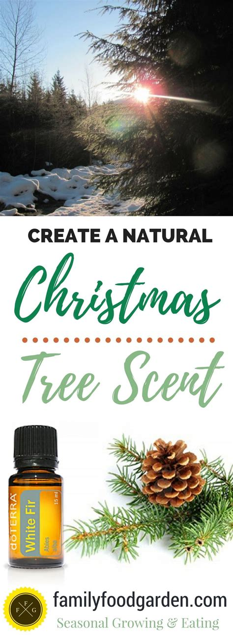 how to get that natural christmas tree smell without a