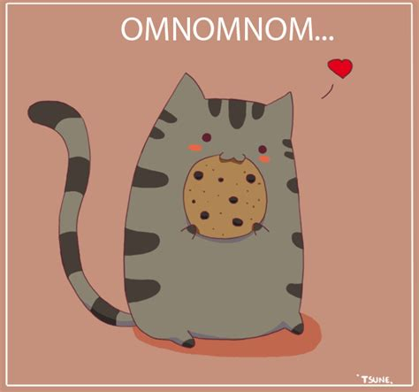 pusheen pictures  images  pics  facebook tumblr pinterest  twitter