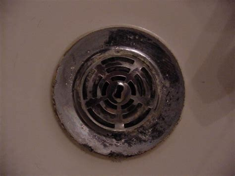 Shower Drain Cover Removal shower drain cover removal