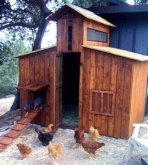 backyard chicken house chicken coop ideas designs and layouts for your backyard