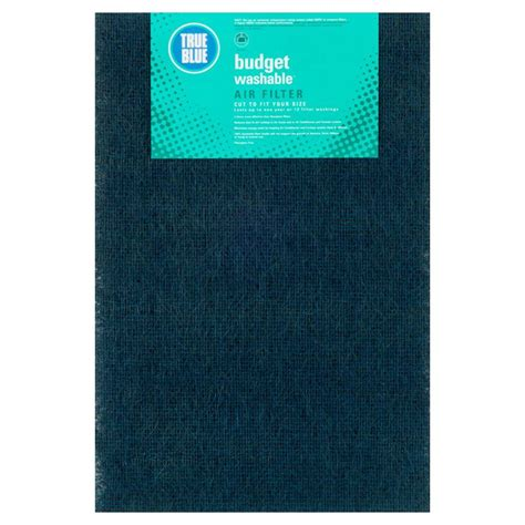 true blue 20 in x 30 in x 1 in budget fpr 2 washable