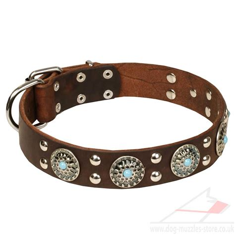 large leather collars large collars collars leather studded design 163 50 90