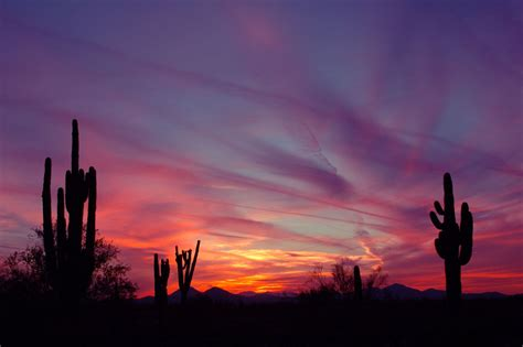 Az Search Arizona Sunset Images Search