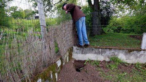 estancarbon quel animal a creus 233 dans le jardin de jean