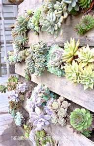 Concrete Succulent Planter creative indoor and outdoor succulent garden ideas 2017