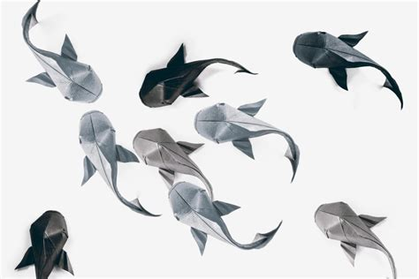 how to make origami koi fish you should definitely give a carp about these beautiful