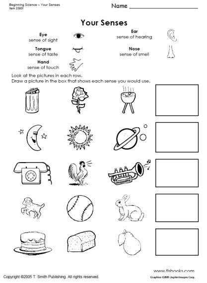 snapshot image of beginning science worksheets about the