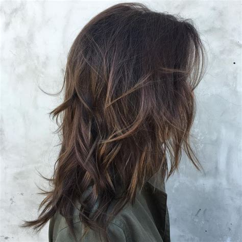 the best shoo for hair with highlight best 25 hair with highlights ideas on pinterest brown