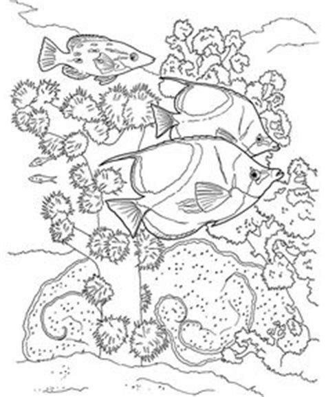 advanced fish coloring pages fish ocean castle seahorse starfish water coloring pages
