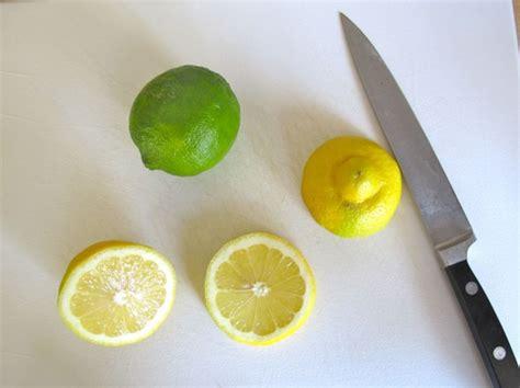 How To Make Lemon Twists by How To Make A Lemon Or Lime Twist Avey