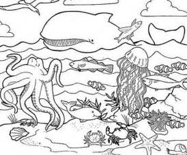 sea animals coloring pages to print ocean coloring pages
