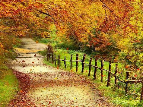 wallpaper full hd beautiful beautiful autumn scenery wallpapers full hd wallpaper