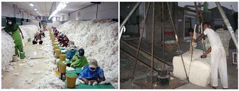 tessilfibre  claudio marengo cotton textiles
