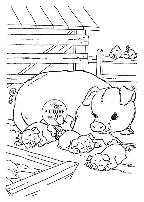 farm pig coloring page cute pigs coloring page for kids animal coloring pages