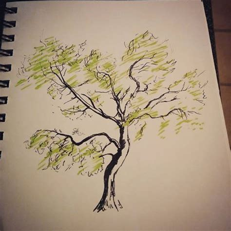 60 ash tree tattoos ideas ash tree design sle